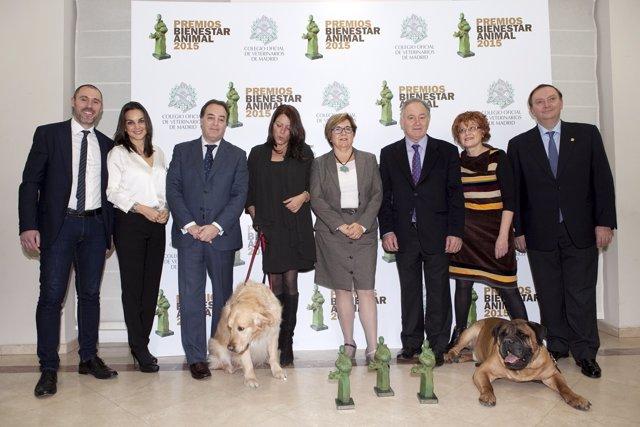 I Premios Bienestar Animal