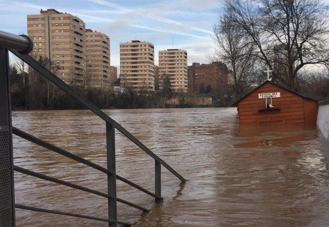 Crecida del río Pisuerga. Enero de 2016