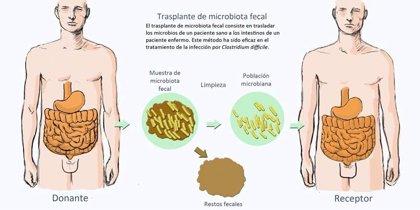 Crean una técnica que mejora el trasplante de microbiota fecal intestinal
