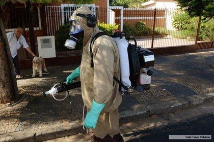 Declaran brote epidémico de dengue en Argentina