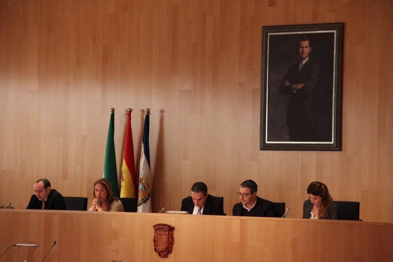 Pleno de enero de la Diputación de Málaga