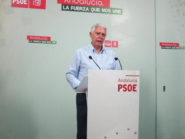 El senador del PSOE por Cádiz, Francisco Menacho.