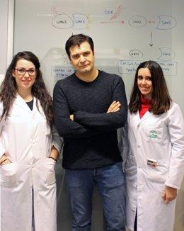 Marco Antonio Calzado, junto a dos compañeras del Grupo de Inflamación y Cáncer