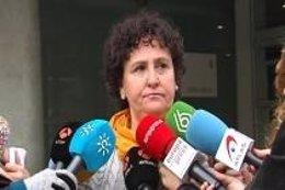 María Salmerón atiende a los medios a las puertas del juzgado