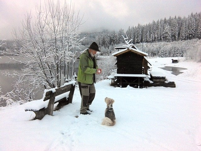 Anciano, nieve, perro, frío