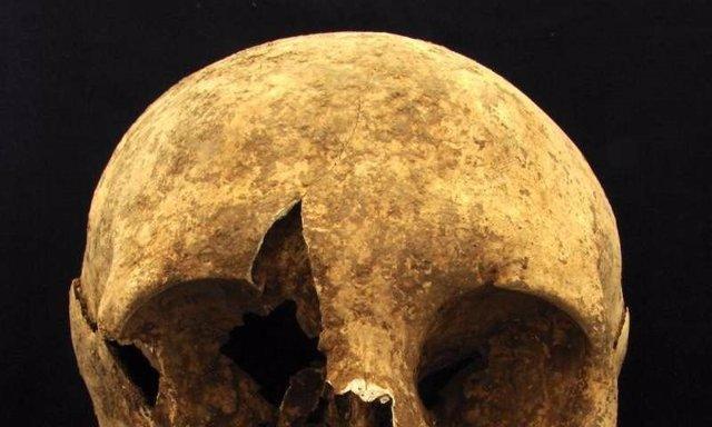 Cráneo objeto del estudio