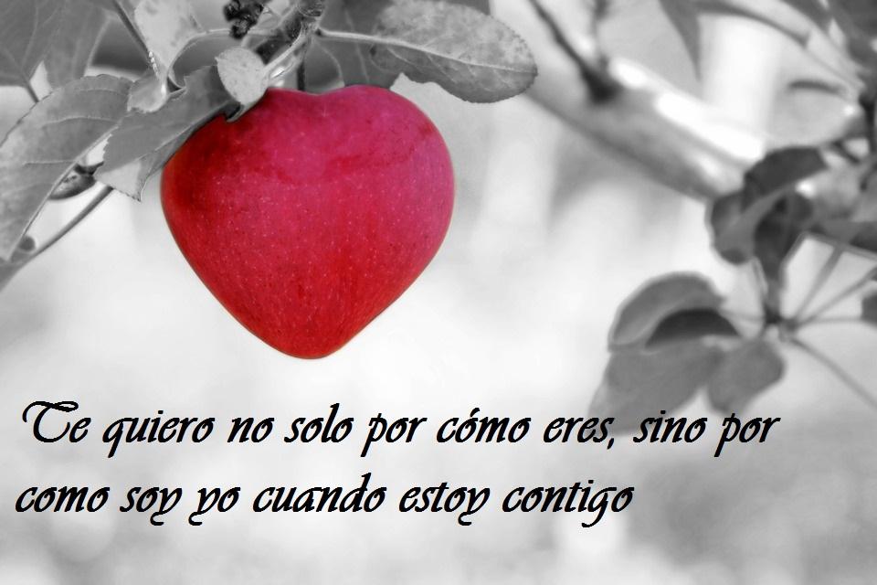 San Valentín 2019 10 Frases De Amor Bonitas Para Dedicar El
