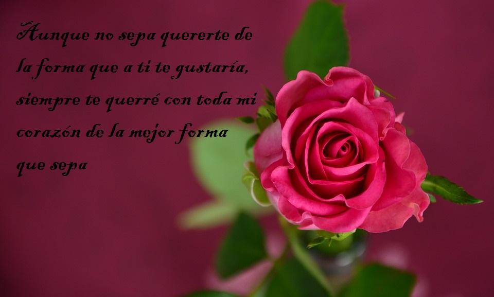 San Valentín 2018 10 Frases De Amor Bonitas Para Dedicar El Día De