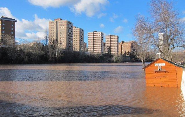 El río Pisuerga, este lunes, a su paso por Valladolid