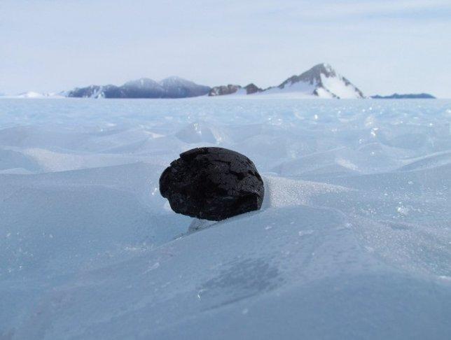 Meteorito antártico