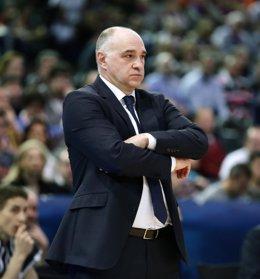 El entrenador del Real Madrid, Pablo Laso, en la Copa del Rey