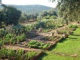 Vista de los huertos ecológicos en El Tamujar