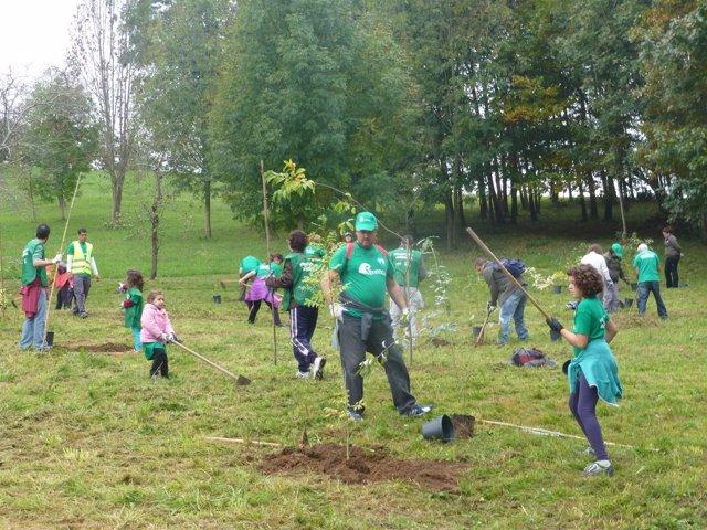 Una de las actividades de Bosques de Cantabria dentro de PROVOCA