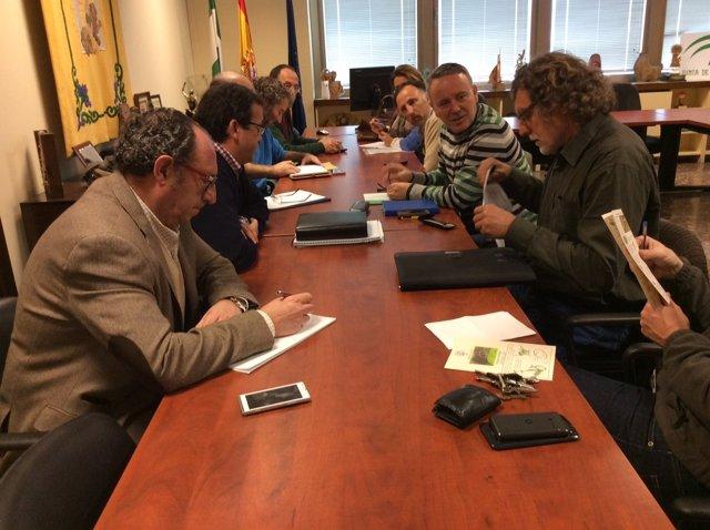 Reunión sobre la avispilla del castaño en Málaga