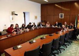 Comisión de investigación sobre cursos de formación en Andalucía