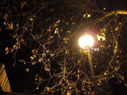 El recibo de luz baja un 8,1% en febrero por el temporal
