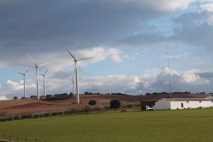 La demanda de electricidad desciende un 0,5% en febrero y la eólica eleva su aportación al 30%