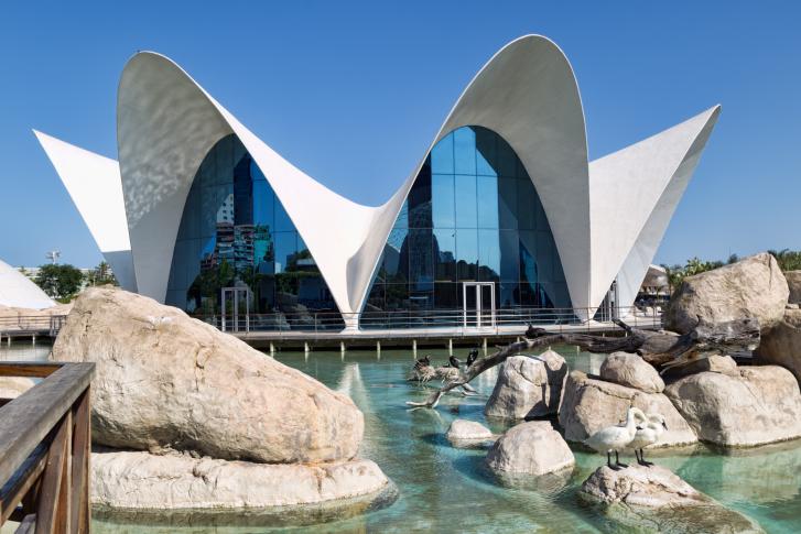 L'Oceanographic, de Valencia