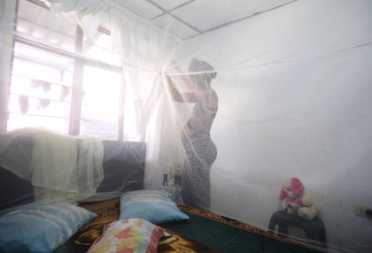 Los infectados por Virus Zika en Colombia ascienden a más de 47.000