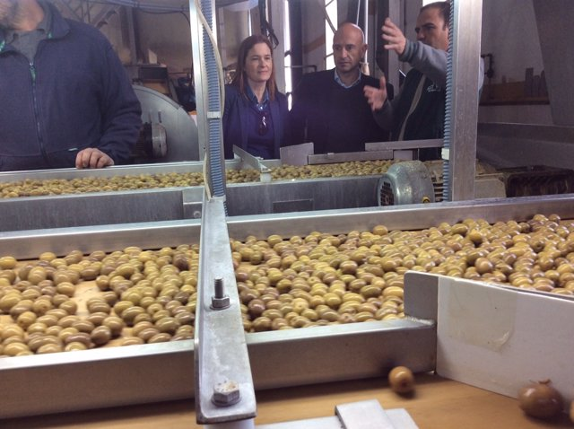 Javier Salas visita una cooperativa olivarera de Humilladero