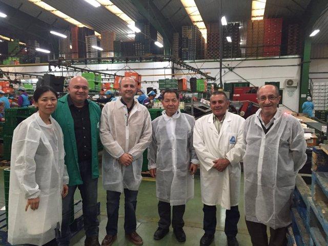 Delegación japonesa que ha visitado el sistema productivo ejidense