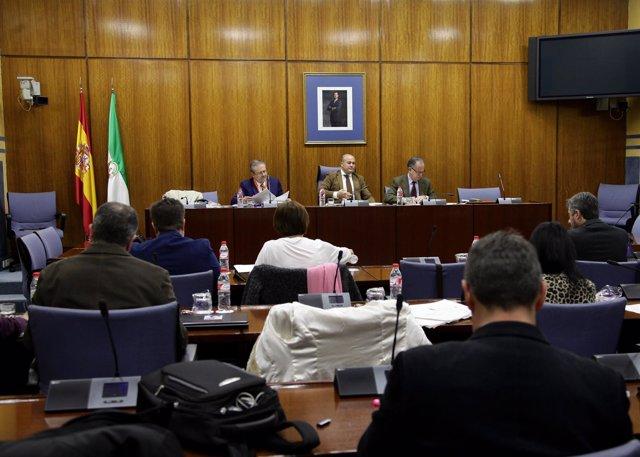 Una de las sesiones de comparecencias ante la comisión de formación