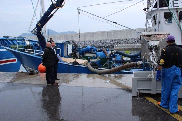 Puerto pesquero.