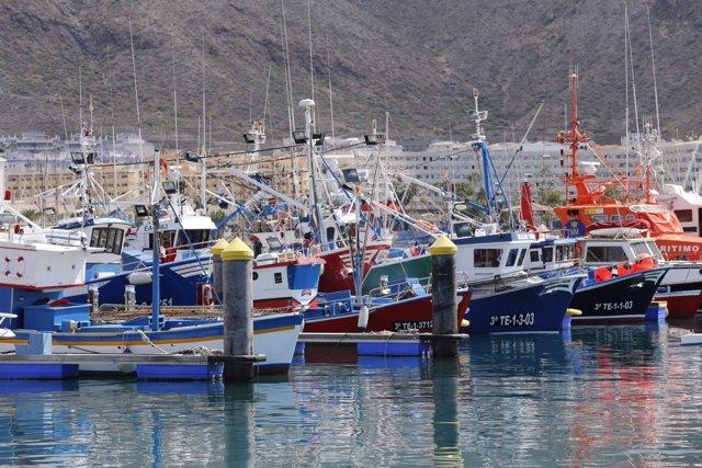 Barcos de pesca atracados en Los Cristianos