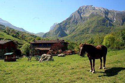 El PSOE pide medidas y presupuesto para proteger la ganadería y agricultura de montaña