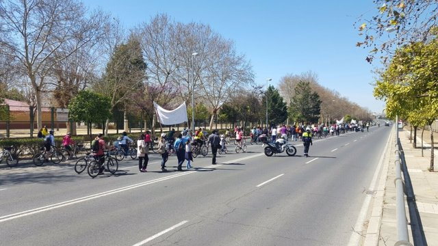 Marcha ciudadana para exigir la pasarela ciclista de la SE-30