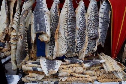 Recomendaciones para evitar intoxicaciones con pescado durante Semana santa