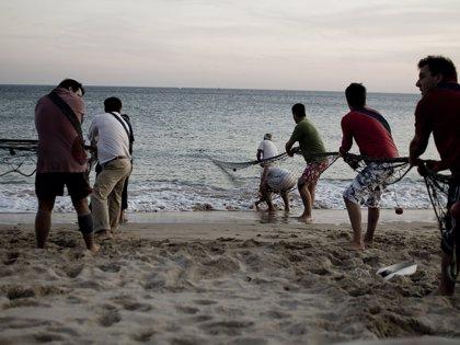 Cuba se suma a un pacto internacional de la FAO para combatir la pesca ilegal