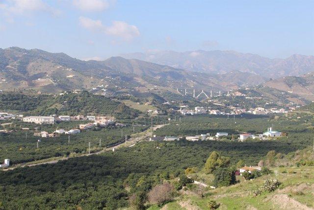 Plantaciones de subtropicales en Almuñécar (Granada)
