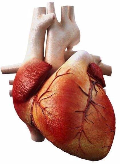 Los antiinflamatorios más clásicos también pueden aumentar el riesgo de infarto