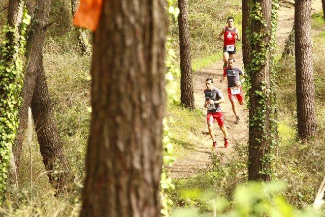 Imagen del Trail Costa Quebrada de 2015