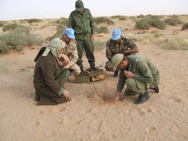 Varios miembros de la MINURSO trabajando sobre el terreno