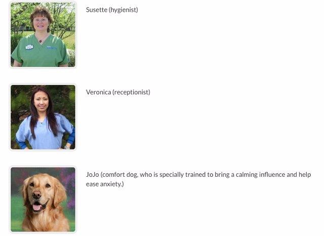 Jojo, el perro enfermera que ayuda a calmar a los niños de un dentista