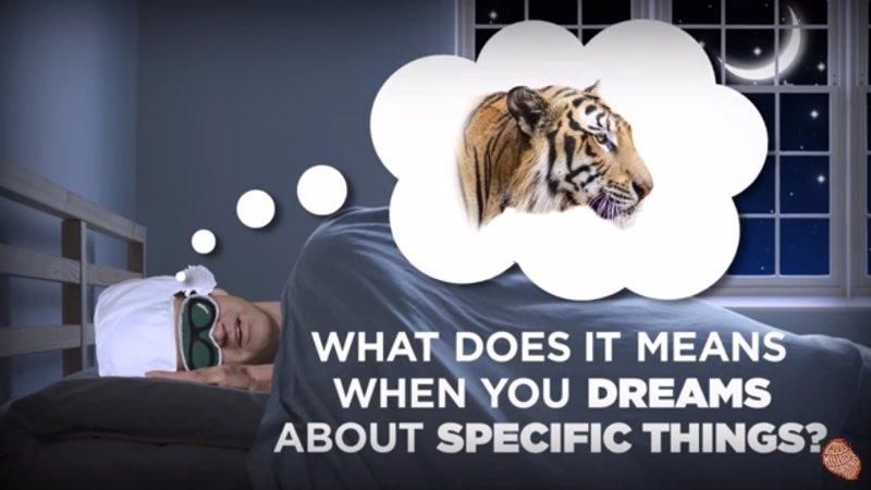 ¿Sabes lo que significa soñar con una serpiente, con un ábaco o con que te estás cayendo?