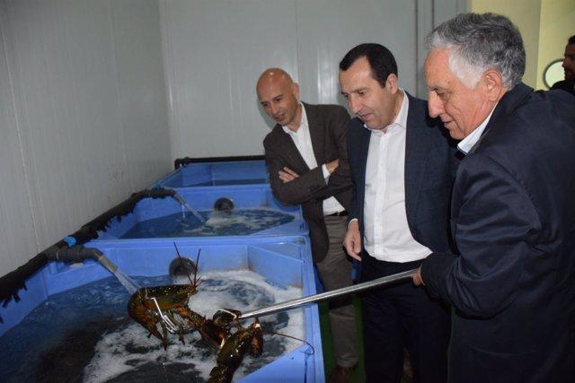 Ruiz Espejo y Salas visita una empresa malagueña de productos del mar