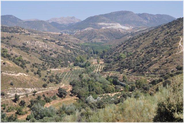 Zona de Jesús del Valle, en el Valle del Darro, en Granada