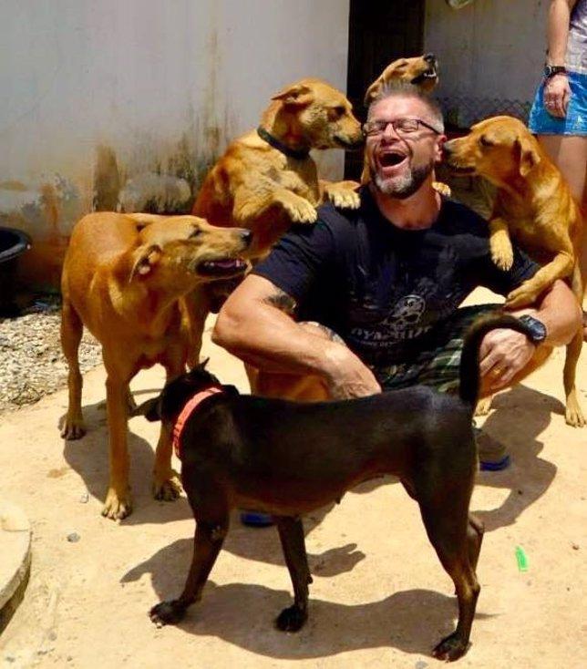 Michael J. Baines da de comer cada día a unos 80 perros callejeros