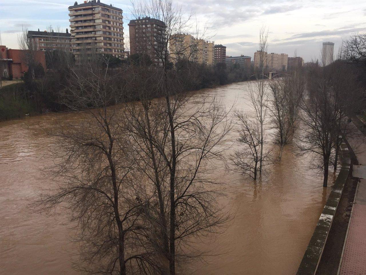 El río Pisuerga a su paso por Valladolid. Enero de 2016