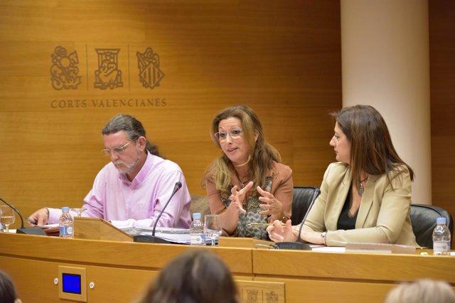 La abogada de la Generalitat en la comisión del metro