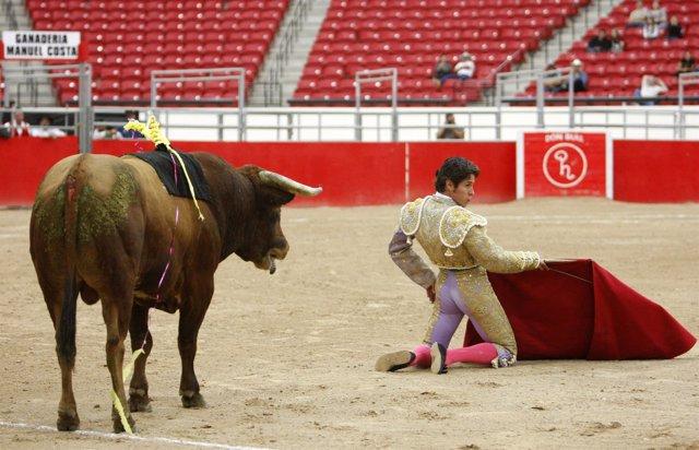 Recursos de corridas de toros