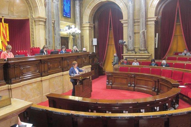 La consellera Dolors Bassa en el Parlament
