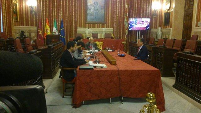 José Luis Sanz en la comisión.