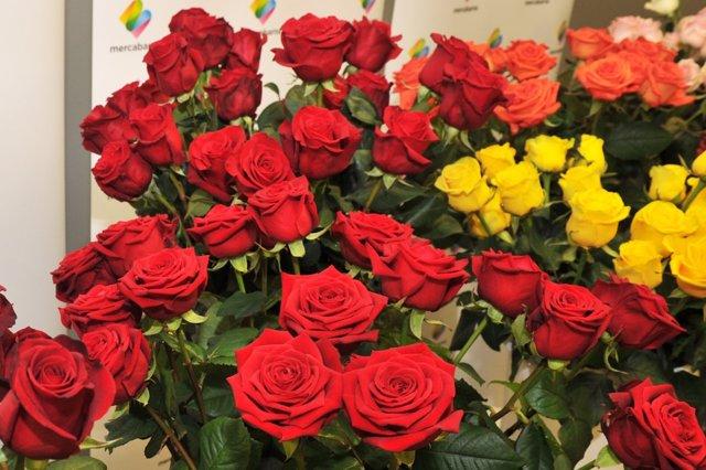 Rosas, flores, Sant Jordi