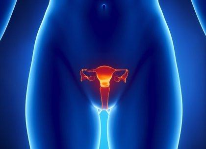 Vinculan la mutación del gen BRCA1 a problemas de fertilidad en la mujer