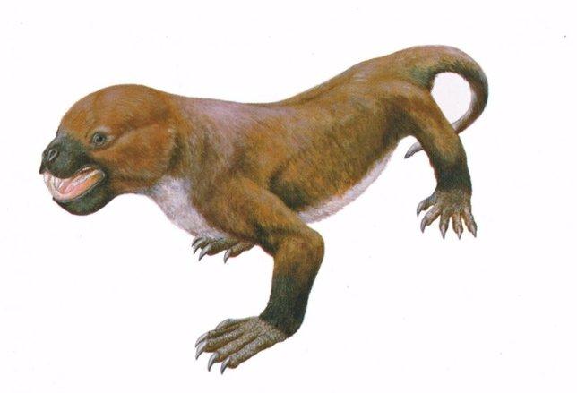 Tritilodontids
