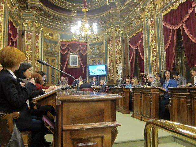 Pleno de Bilbao